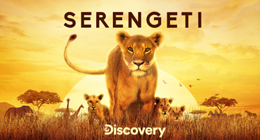 Serengeti on Discovery Channel